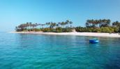 Ngắm san hô ở đảo Bé - Lý Sơn bằng thuyền thúng xinh đẹp