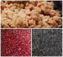 Bánh trung thu mè đen nhân hạt sen đậu đỏ - vừa ngon vừa tốt cho sức khỏe