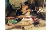 Nghệ An: Trâu chết hàng loạt khiến người dân lo lắng