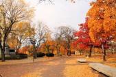 Những địa điểm du lịch mùa thu hấp dẫn nhất thế giới