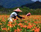 10 điểm du lịch nước ngoài được lòng khách Việt vào mùa thu