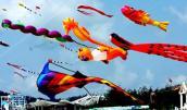 25 quốc gia tham dự Liên hoan diều quốc tế Bà Rịa - Vũng Tàu lần thứ VII