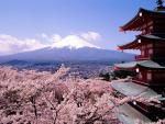 10 điều thú vị trong văn hóa của người Nhật Bản