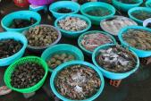Điểm danh những loại hải sản tầng đáy độc hại không nên ăn