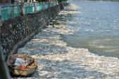Hơn 60 tấn cá chết ở Hồ Tây sẽ đi đâu?