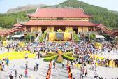 Vạn người trẩy hội hoa cúc chùa Ba Vàng
