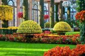 Những khu vườn đẹp nhất nước Mỹ mùa thu