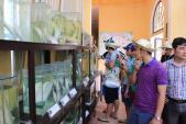 Hà Nội mở 4 tour miễn phí cho khách du lịch