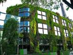 Thủ đô Paris: Người dân trồng cây quanh thành phố
