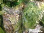 Rau Đà Lạt tại vườn tăng giá, rau Hà Nội leo thang chóng mặt