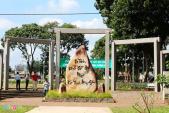 Phượt các điểm hút khách mới của Đồng Nai với 500.000 đồng