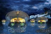Khách sạn sứa khổng lồ thân thiện với môi trường