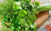 Tiêu diệt tế bào ung thư từ các loại rau thơm