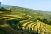Loạt ảnh mùa thu vùng cao ở Việt Nam