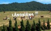 TOP 5 những địa danh nổi tiếng ở Đà Lạt có sức mê hoặc du khách nhất