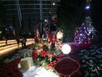3 địa điểm chơi Noel ở Cần Thơ mà bạn nên biết