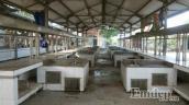 Chợ thực phẩm tươi sống tiền tỷ vắng lặng người mua kẻ bán ở Hưng Yên