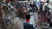 15 địa điểm đón Tết Nguyên Đán tuyệt nhất thế giới