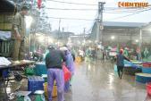 Chợ cá lớn nhất Hà Nội tấp nập trước ngày cúng ông Công ông Táo