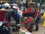 Phố cây cảnh nổi tiếng Hà Nội bung hàng đón Tết