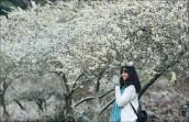 Những địa điểm check-in đẹp dịp Tết Nguyên đán dọc đất nước
