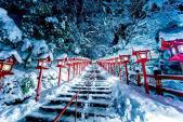 Ngắm tuyết trắng giữa thiên đường mùa đông Tokyo