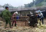 Làng làm mật mía Tết nổi tiếng ở xứ Nghệ vào mùa