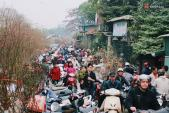 Ngày 29 Tết: Người Hà Nội chen chúc ở chợ hoa Quảng Bá