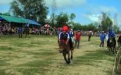 Hội đua ngựa ở Phú Yên