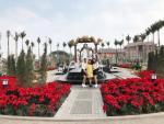 Sun World Ha Long Park hút khách du xuân dịp đầu năm