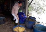 Từ bỏ lương ngàn đô tại Đức về Việt Nam nuôi gà, tôm làm giàu 10 tỷ/năm