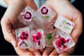 Những bông hoa ướp đá và công dụng dưỡng da thần kì!