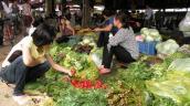 Bí kíp đi chợ đầu mối cuối tuần với 500 ngàn đồng đầy đủ thực phẩm cho cả tuần