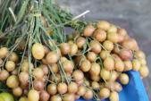 Kinh nghiệm mua trái cây NGON - BỔ - RẺ - AN TOÀN, bà nội trợ nào cũng PHẢI BIẾT