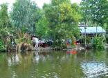 Vụ cháu gái bị xâm hại tình dục: Xem xét trách nhiệm CA tỉnh Cà Mau