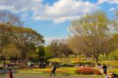 Thiên đường hoa ở công viên mang tên Nhật hoàng Hirohito