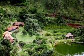 Du lịch Đà Lạt đừng quên trải nghiệm ngôi làng đẹp như một bức tranh thủy mặc