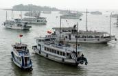 Đình chỉ hoạt động trên Vịnh Hạ Long đối với tàu du lịch vi phạm