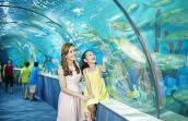 Quốc tế Thiếu nhi 1/6: 6 địa điểm vui chơi cho bé hấp dẫn nhất tại Hà Nội