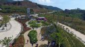 Những góc check-in lãng mạn tại xứ hoa Sun World Fansipan Legend