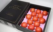 Biếu sếp cà chua Nhật đắt nhất thế giới, 1,6 triệu/kg