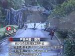 Khách Trung Quốc vượt tường trốn vé, suýt đối mặt hổ dữ