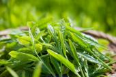 10 loại thực phẩm tự nhiên giúp chống nắng hiệu quả nhất cho làn da
