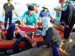 Hải sản tươi roi rói tại chợ cá sáng sớm trên đảo Lý Sơn