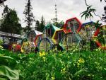 Du lịch Sapa hè này: Trải nghiệm mới toanh với homestay ống cống rực rỡ