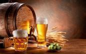 Tác dụng của bia đối với da cho hiệu quả bất ngờ đến khó tin