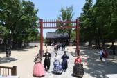 Thiếu nữ xinh đẹp trong trang phục hanbok Hàn Quốc