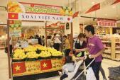 Xoài Cát Chu xuất sang Nhật 100.000 đồng/quả được trồng thế nào?