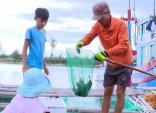 Phú Yên: Hải sản trên đầm Ô Loan bị nổ mắt, lở loét chết bất thường