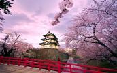 Đây là những đặc điểm tính cách khiến người Nhật thành công trong mọi lĩnh vực